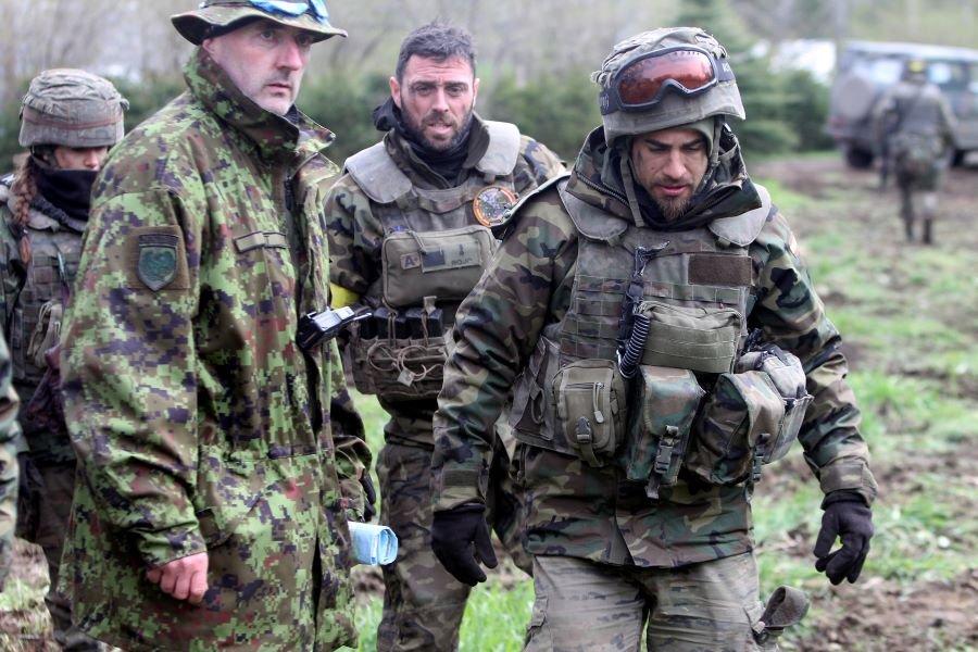 НАТО выпускает против России «Яростного ястреба»