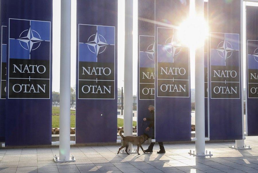 Вопросов больше чем ответов: чем обернулась атлантическая интеграция для Албании и Хорватии?
